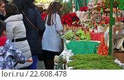 Купить «BARCELONA, SPAIN - NOVEMBER 30, 2015: Traditional Christmas fair near Cathedral in Barcelona, Catalonia.», видеоролик № 22608478, снято 30 ноября 2015 г. (c) Яков Филимонов / Фотобанк Лори
