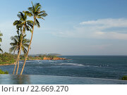 Купить «view from infinity edge pool to ocean and palms», фото № 22669270, снято 18 февраля 2016 г. (c) Syda Productions / Фотобанк Лори