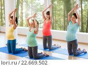 Купить «happy pregnant women exercising on mats in gym», фото № 22669502, снято 5 марта 2016 г. (c) Syda Productions / Фотобанк Лори