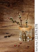 Купить «Верба в стакане с водой», фото № 22679678, снято 24 апреля 2016 г. (c) Наталья Осипова / Фотобанк Лори