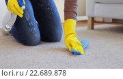 Купить «woman in gloves cleaning carpet or rug with rag», видеоролик № 22689878, снято 17 апреля 2016 г. (c) Syda Productions / Фотобанк Лори