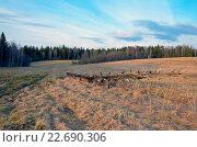 Купить «Солнечный весенний пейзаж в Московской области», фото № 22690306, снято 24 апреля 2016 г. (c) Валерий Боярский / Фотобанк Лори