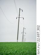 Линия электропередач стоит в поле пшеницы. Стоковое фото, фотограф Михаил Бессмертный / Фотобанк Лори