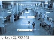 В зале прилета в аэропорту (2016 год). Редакционное фото, фотограф Victoria Demidova / Фотобанк Лори