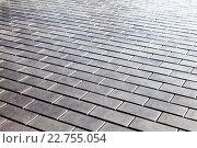 Купить «Серая тротуарная плитка в качестве фона», фото № 22755054, снято 25 июня 2019 г. (c) FotograFF / Фотобанк Лори