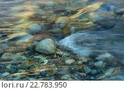Купить «Каменистое дно ручья», фото № 22783950, снято 3 мая 2016 г. (c) александр жарников / Фотобанк Лори