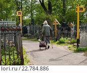 Купить «Обозначение участков на Даниловском кладбище в Москве», фото № 22784886, снято 7 мая 2016 г. (c) Vadim Polishchuk / Фотобанк Лори