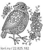 Страница раскраски с птицей и цветами. Стоковая иллюстрация, иллюстратор Анастасия Ульянова / Фотобанк Лори