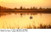 Купить «Лебедь в озере в золотом вечернем свете на закате», видеоролик № 22833070, снято 12 мая 2016 г. (c) Mikhail Davidovich / Фотобанк Лори