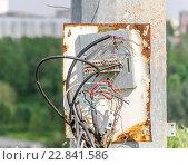 Неаккуратно заделанные и уложенные силовые и телефонные кабели на одном щитке. Стоковое фото, фотограф Светогор Александр Романович / Фотобанк Лори