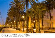 Купить «Twilight view of Rambla passage at Badalona», фото № 22856194, снято 15 августа 2018 г. (c) Яков Филимонов / Фотобанк Лори