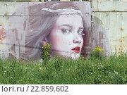 Граффити на заборе (2016 год). Редакционное фото, фотограф Александр Устинов / Фотобанк Лори