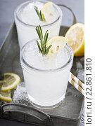 Купить «Лимонный коктейль со льдом и розмарином на подносе», фото № 22861810, снято 11 мая 2016 г. (c) Елена Веселова / Фотобанк Лори