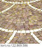 brick in castellanza street lombardy italy varese abstract. Стоковое фото, фотограф Zoonar/LKPRO / easy Fotostock / Фотобанк Лори