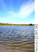 Легкая рябь на пруду. Стоковое фото, фотограф Андрей Силивончик / Фотобанк Лори
