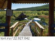 Купить «Лестница к термальным источникам в Налычево на Камчатке», фото № 22927042, снято 7 сентября 2013 г. (c) А. А. Пирагис / Фотобанк Лори
