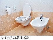 Купить «toilet sanitary sink or bowl bidet and paper», фото № 22941526, снято 20 июля 2015 г. (c) Дмитрий Калиновский / Фотобанк Лори