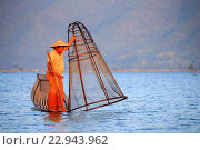Купить «Myanmar (Burma), Province Shan, Inle Lake, Nyaungshwe Village, Intha fisherman fishing in the lake, Traditional fishing creels», фото № 22943962, снято 8 декабря 2015 г. (c) age Fotostock / Фотобанк Лори