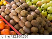 Купить «kiwi on the market», фото № 22950330, снято 20 июня 2019 г. (c) Яков Филимонов / Фотобанк Лори