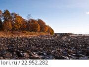 Вспаханое поле (2013 год). Стоковое фото, фотограф Екатерина Давыдова / Фотобанк Лори