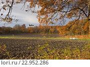 Тихая осень в Стегеборге (2013 год). Редакционное фото, фотограф Екатерина Давыдова / Фотобанк Лори