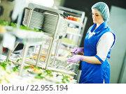 Купить «buffet female worker servicing food in cafeteria», фото № 22955194, снято 10 февраля 2016 г. (c) Дмитрий Калиновский / Фотобанк Лори