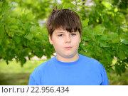 Купить «Portrait of boy of about 12 years in Oak Park», фото № 22956434, снято 15 мая 2016 г. (c) Володина Ольга / Фотобанк Лори