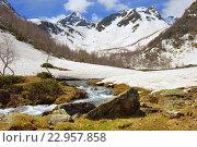 Купить «Весна в Кавказских горах», фото № 22957858, снято 21 мая 2016 г. (c) александр жарников / Фотобанк Лори