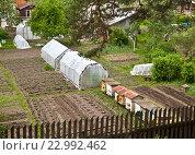 Купить «Частное хозяйство с ульями и парниками», фото № 22992462, снято 25 мая 2016 г. (c) Элина Гаревская / Фотобанк Лори