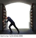 Купить «Businessman has found exit, concept», фото № 23034090, снято 11 мая 2016 г. (c) Владимир Мельников / Фотобанк Лори