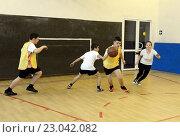 Купить «Игра в баскетбол на уроке физкультуры», фото № 23042082, снято 24 октября 2013 г. (c) Free Wind / Фотобанк Лори