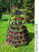 Купить «Декоративное оформление - вертикальный цветочный вазон в сквере на Жулебинском бульваре в Москве», эксклюзивное фото № 23049274, снято 3 августа 2015 г. (c) lana1501 / Фотобанк Лори