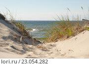 Купить «Песчаные дюны Куршской косы», эксклюзивное фото № 23054282, снято 5 июня 2016 г. (c) Svet / Фотобанк Лори