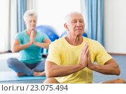 Купить «Seniors performing yoga», фото № 23075494, снято 2 марта 2016 г. (c) Wavebreak Media / Фотобанк Лори