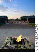 Купить «Мемориал «Вечный огонь» на Марсовом поле в России», фото № 23077770, снято 23 мая 2016 г. (c) Стивен Жингель / Фотобанк Лори