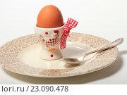 Купить «Яйцо на подставке и тарелка. Завтрак», эксклюзивное фото № 23090478, снято 14 июня 2016 г. (c) Яна Королёва / Фотобанк Лори