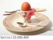 Купить «Яйцо на подставке и тарелка. Завтрак», эксклюзивное фото № 23090494, снято 14 июня 2016 г. (c) Яна Королёва / Фотобанк Лори
