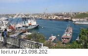 Купить «Вид на южную бухту Севастополя. Крым», видеоролик № 23098202, снято 18 апреля 2016 г. (c) Яна Королёва / Фотобанк Лори