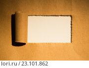 Купить «Лист бумаги с рваным отверстием посередине», фото № 23101862, снято 21 октября 2014 г. (c) Wavebreak Media / Фотобанк Лори