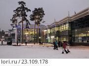 Купить «Балашиха Арена зимой», эксклюзивное фото № 23109178, снято 18 декабря 2015 г. (c) Дмитрий Неумоин / Фотобанк Лори