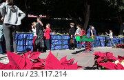 Купить «Центральные пешеходные улицы туристического города Канделария. Туристы рассматривают историческую модель города. Тенерифе, Канары, Испания», видеоролик № 23117214, снято 19 мая 2016 г. (c) Кекяляйнен Андрей / Фотобанк Лори