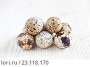 Купить «Перепелиные яйца на светлом деревянном фоне», фото № 23118170, снято 19 июня 2016 г. (c) Юлия Бочкарева / Фотобанк Лори
