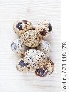 Купить «Перепелиные яйца на светлом деревянном фоне», фото № 23118178, снято 19 июня 2016 г. (c) Юлия Бочкарева / Фотобанк Лори