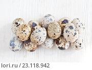 Купить «Перепелиные яйца на светлом деревянном фоне», фото № 23118942, снято 19 июня 2016 г. (c) Юлия Бочкарева / Фотобанк Лори