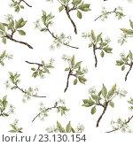 Купить «Бесшовный фон из цветущих веточек вишни на белой бумаге. Акварель.», иллюстрация № 23130154 (c) Марина / Фотобанк Лори