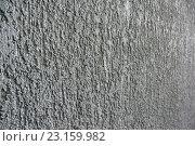 Покрытие стены декоративной штукатуркой. Стоковое фото, фотограф Алексей Макшаков / Фотобанк Лори