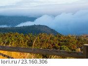 Fog over wooded mountains. Стоковое фото, фотограф Яков Филимонов / Фотобанк Лори