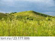 Купить «Холм в донской степи», фото № 23177886, снято 12 июня 2016 г. (c) Борис Панасюк / Фотобанк Лори