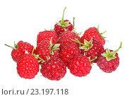 Купить «Спелые ягоды малины на белом фоне изолировано», фото № 23197118, снято 3 августа 2015 г. (c) Наталья Волкова / Фотобанк Лори
