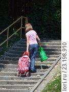 Купить «Девушка тащит сумку-тележку вверх по лестнице», эксклюзивное фото № 23198910, снято 29 июня 2016 г. (c) lana1501 / Фотобанк Лори